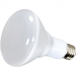 10BR30/LED/3K/120V/6PK